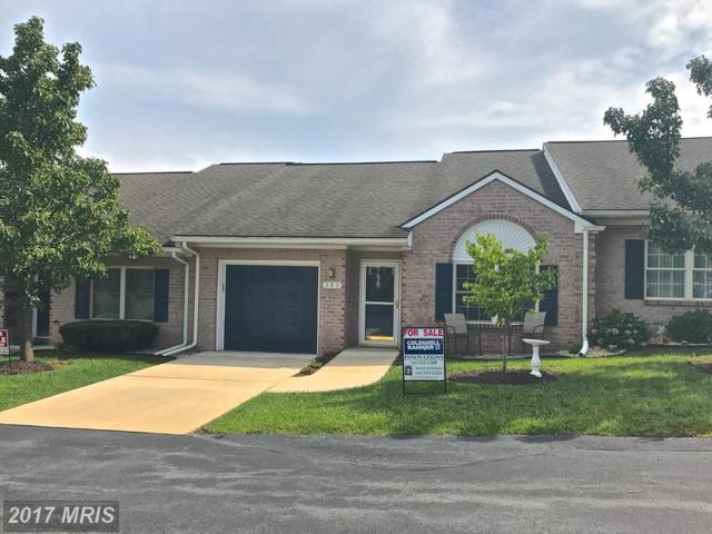 336 Sunbrook Lane #121, Hagerstown, MD 21742 (#WA10034109) :: Pearson Smith Realty