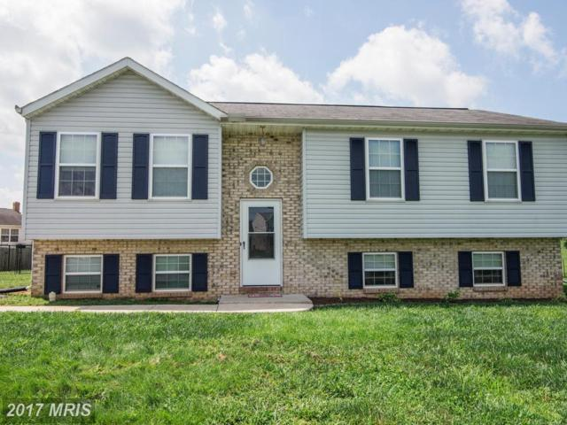 18833 Diller Drive, Hagerstown, MD 21742 (#WA10037156) :: Pearson Smith Realty