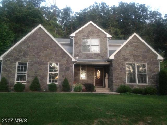 24435 Graham Avenue, Smithsburg, MD 21783 (#WA10039719) :: Pearson Smith Realty