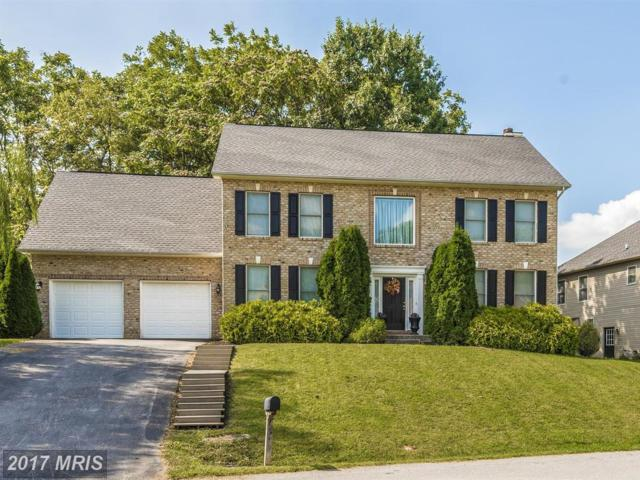 11414 Woodview Drive, Hagerstown, MD 21742 (#WA10050265) :: The Maryland Group of Long & Foster