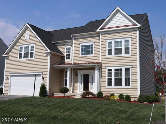19006 Black Maple Way, Hagerstown, MD 21742 (#WA10060802) :: The Maryland Group of Long & Foster