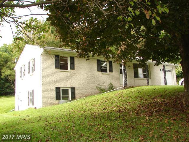 2246 Kaetzel Road, Knoxville, MD 21758 (#WA10063010) :: Pearson Smith Realty