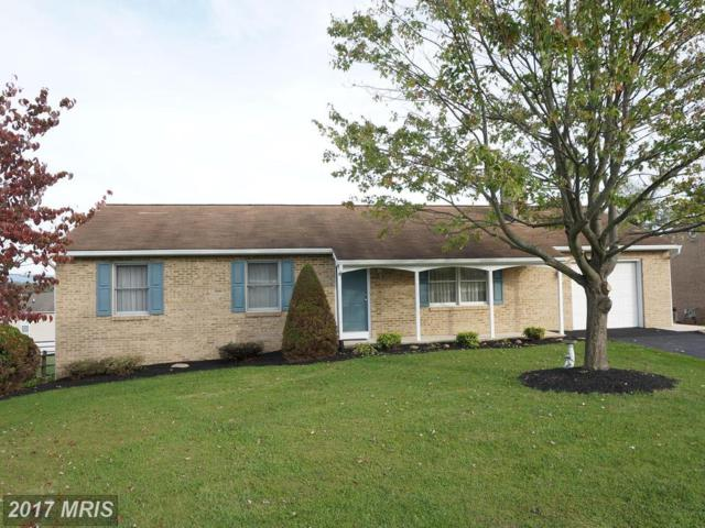 420 Village Place, Hagerstown, MD 21742 (#WA10087374) :: Pearson Smith Realty