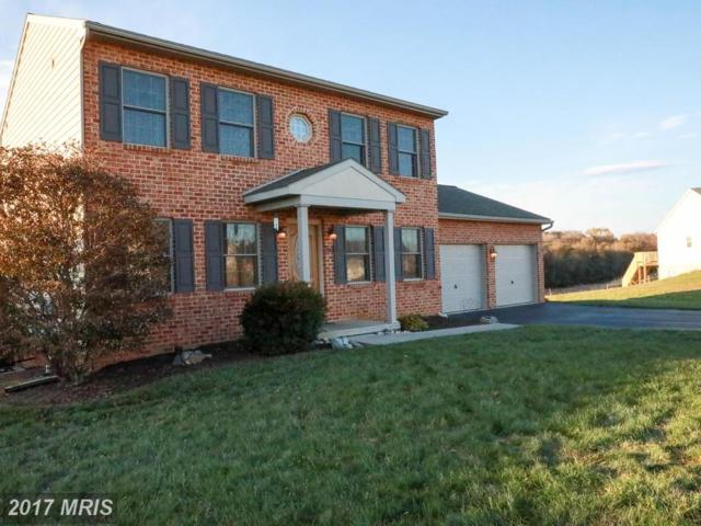 326 Dayspring Lane, Hagerstown, MD 21742 (#WA10108157) :: The Maryland Group of Long & Foster