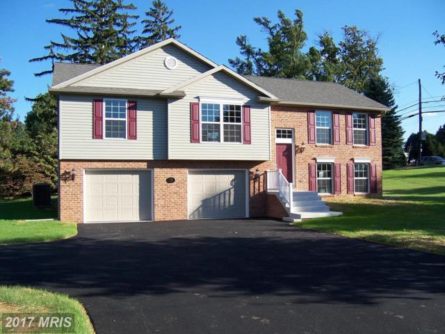 352 Hollymead Terrace, Hagerstown, MD 21742 (#WA10116384) :: Pearson Smith Realty