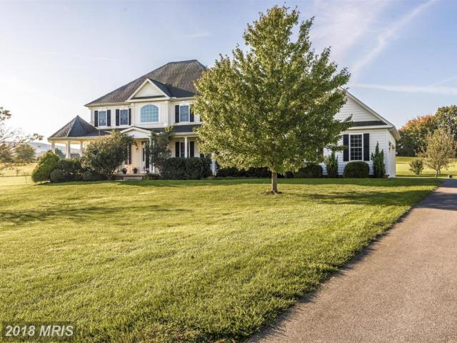 20111 West Stone Court, Keedysville, MD 21756 (#WA10133989) :: Blackwell Real Estate