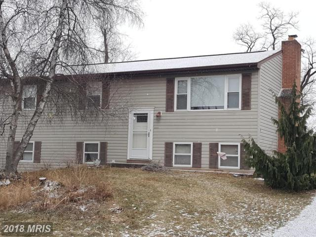 13803 Weber Way, Hagerstown, MD 21742 (#WA10134262) :: Pearson Smith Realty