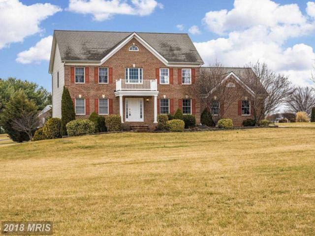 5211 Hollow Tree Lane, Keedysville, MD 21756 (#WA10159266) :: Browning Homes Group