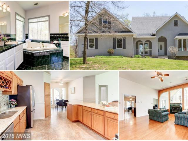 12019 Cove Road, Clear Spring, MD 21722 (#WA10221556) :: Circadian Realty Group