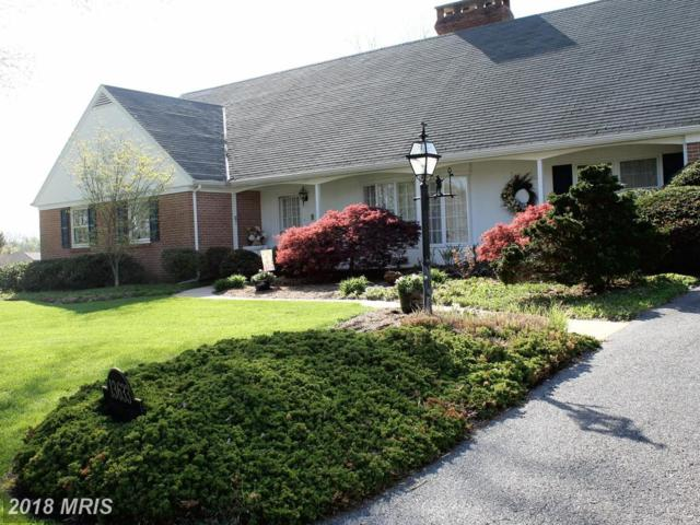 13633 Overhill Drive, Hagerstown, MD 21742 (#WA10248202) :: Circadian Realty Group