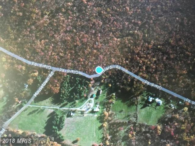 Gilardi Road, Boonsboro, MD 21713 (#WA10317788) :: The Maryland Group of Long & Foster