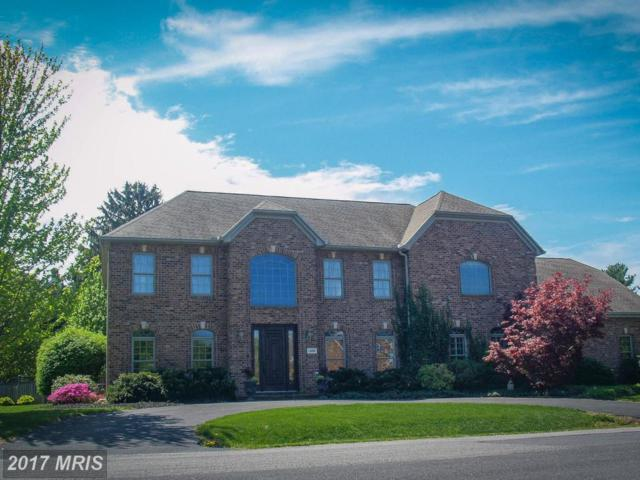 18707 Fountain Terrace, Hagerstown, MD 21742 (#WA9905977) :: Pearson Smith Realty