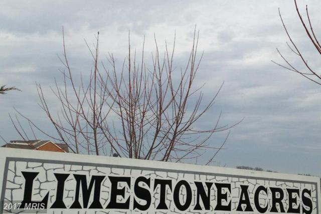 22132 Whitestone Court, Smithsburg, MD 21783 (#WA9915774) :: LoCoMusings