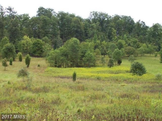 12309 Indian Springs Road, Clear Spring, MD 21722 (#WA9930086) :: Pearson Smith Realty