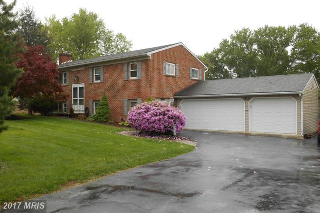 11704 Pheasant Trail, Hagerstown, MD 21742 (#WA9932294) :: LoCoMusings