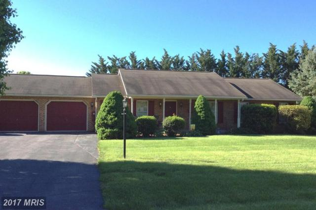 17907 Bluebell Court, Hagerstown, MD 21740 (#WA9942511) :: LoCoMusings