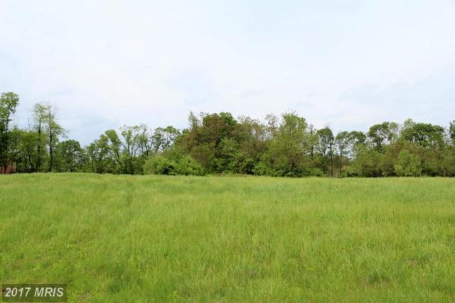 8325 Prophet Acres Road, Fairplay, MD 21733 (#WA9948229) :: Pearson Smith Realty