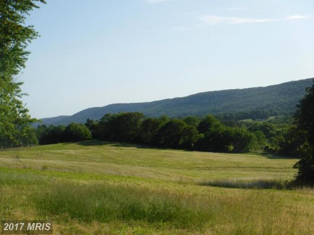 20501 Gathland Trail, Rohrersville, MD 21779 (#WA9964855) :: LoCoMusings