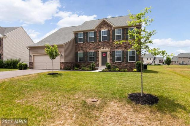 18223 Misty Acres Drive, Hagerstown, MD 21740 (#WA9977739) :: LoCoMusings