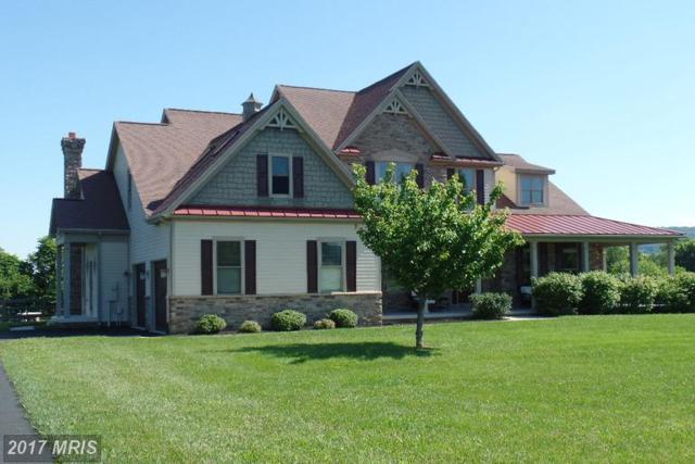 20112 West Stone Court, Keedysville, MD 21756 (#WA9978670) :: LoCoMusings