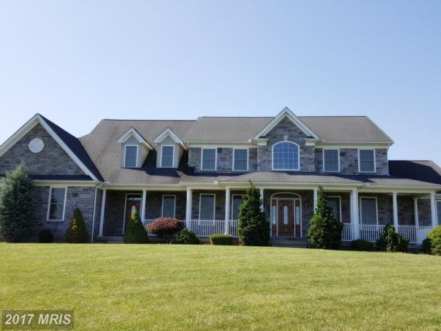 20135 West Stone Court, Keedysville, MD 21756 (#WA9995308) :: Pearson Smith Realty
