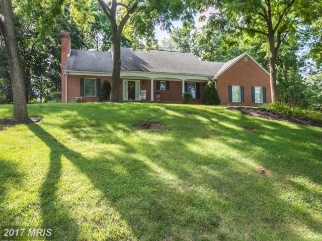 11046 Eastwood Drive, Hagerstown, MD 21742 (#WA9999732) :: Pearson Smith Realty
