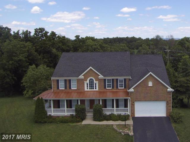 13835 Exeter Court, Hagerstown, MD 21742 (#WA9999825) :: Pearson Smith Realty