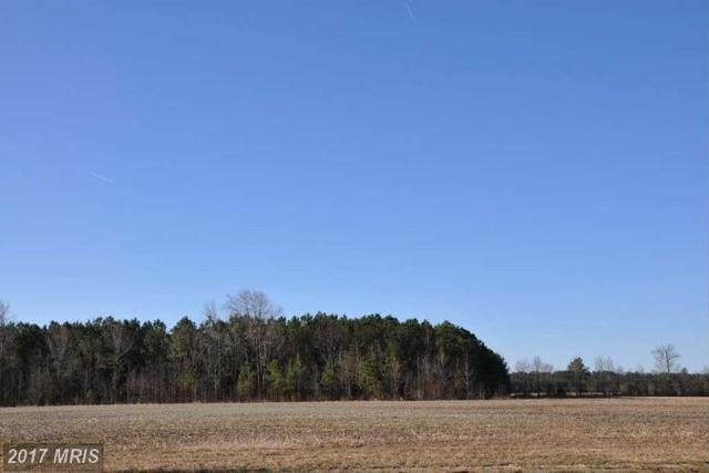 Barbaro Drive, Hebron, MD 21830 (MLS #WC10011683) :: RE/MAX Coast and Country