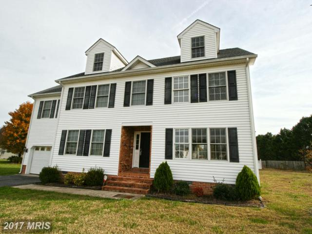 103 Headley Court, Fruitland, MD 21826 (#WC10104673) :: Pearson Smith Realty