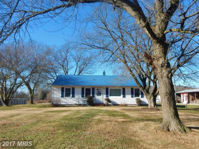 5866 Forest Grove Road, Parsonsburg, MD 21849 (MLS #WC10125701) :: RE/MAX Coast and Country