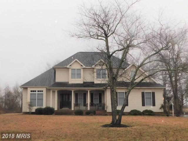 25393 Fairway Drive, Quantico, MD 21856 (#WC10154328) :: The Gus Anthony Team