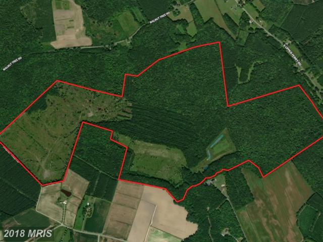 Walnut Tree Road, Eden, MD 21822 (MLS #WC10212591) :: RE/MAX Coast and Country