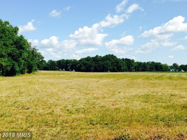 7235 Sixty Foot Road, Pittsville, MD 21850 (#WC10277091) :: RE/MAX Coast and Country