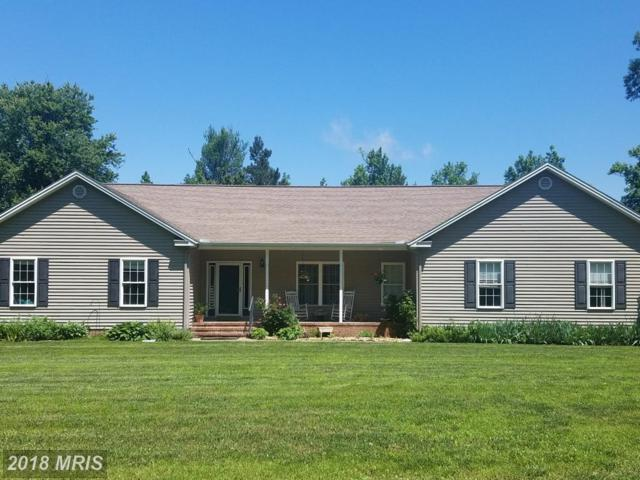 33740 Shockley Road, Parsonsburg, MD 21849 (#WC10282364) :: RE/MAX Coast and Country