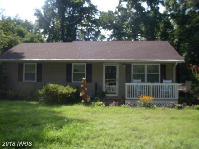 1208 Gannet Avenue, Salisbury, MD 21801 (#WC10324114) :: Maryland Residential Team