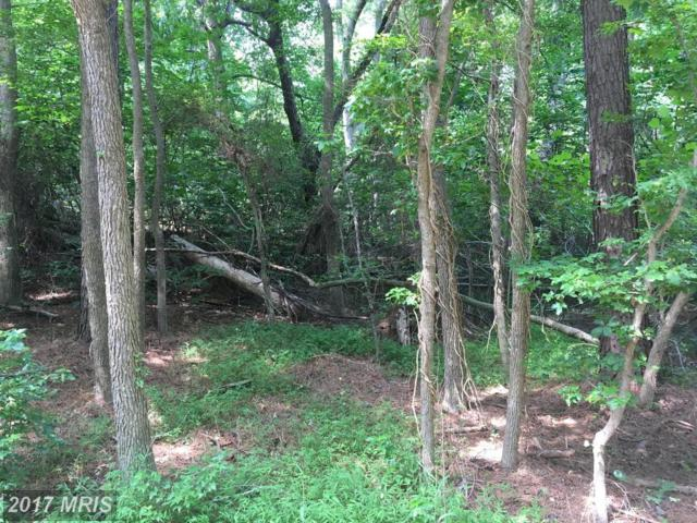 Lot 53 N. Independence Drive, Montross, VA 22520 (#WE10021538) :: Pearson Smith Realty