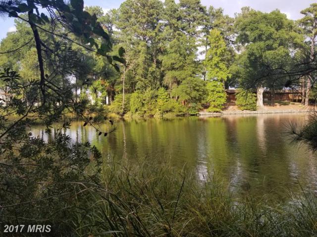 Duck Point Circle, Montross, VA 22520 (#WE10066355) :: LoCoMusings