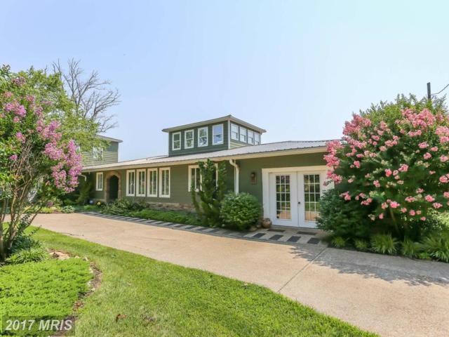 801 Washington Avenue, Colonial Beach, VA 22443 (#WE10073292) :: Pearson Smith Realty