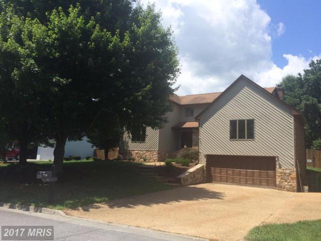 741 Treys Drive, Winchester, VA 22601 (#WI10015851) :: Pearson Smith Realty