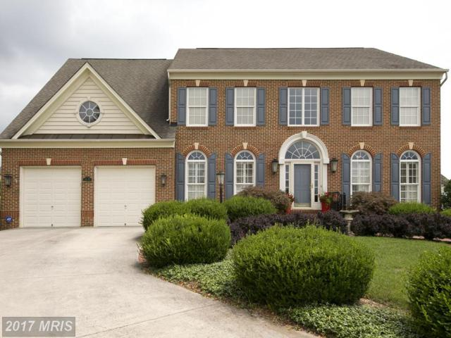 1508 Stone House Court, Winchester, VA 22601 (#WI10018432) :: Pearson Smith Realty