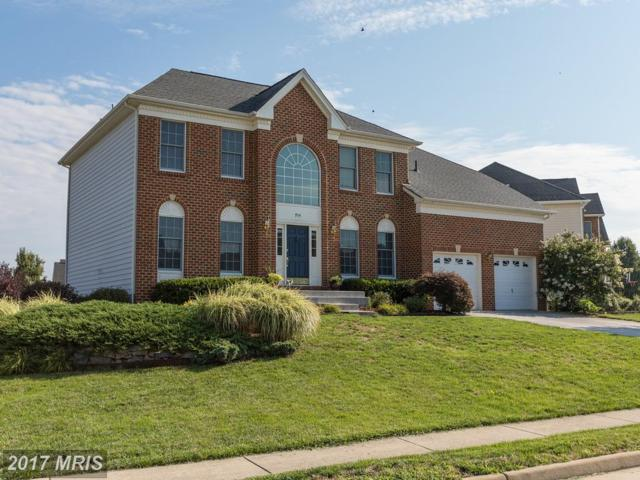 954 Meadow Court, Winchester, VA 22601 (#WI10024477) :: Pearson Smith Realty