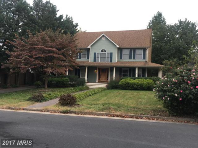 125 Omps Drive, Winchester, VA 22601 (#WI10080776) :: LoCoMusings