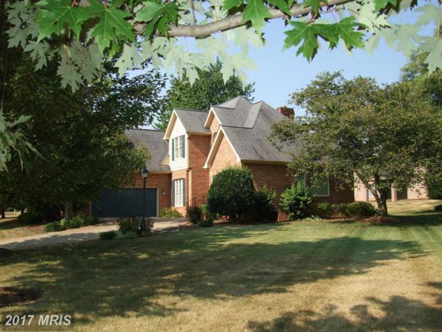 902 Mahone Drive, Winchester, VA 22601 (#WI10081409) :: LoCoMusings