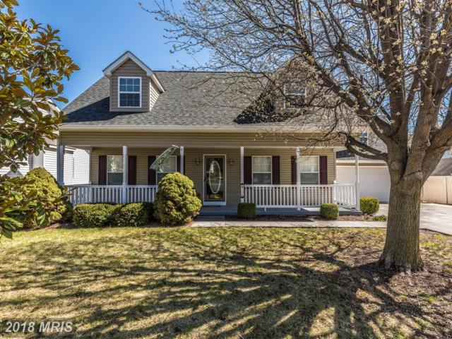 308 Cedarmeade Avenue, Winchester, VA 22601 (#WI10200335) :: The Dwell Well Group