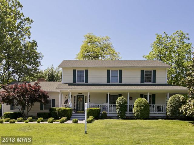 1627 Nester Drive, Winchester, VA 22601 (#WI10251388) :: Bob Lucido Team of Keller Williams Integrity