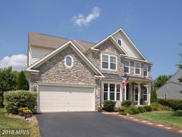 716 Lake Drive, Winchester, VA 22601 (#WI10300537) :: Bob Lucido Team of Keller Williams Integrity