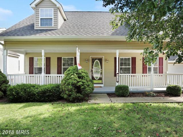 308 Cedarmeade Avenue, Winchester, VA 22601 (#WI10341297) :: RE/MAX Gateway