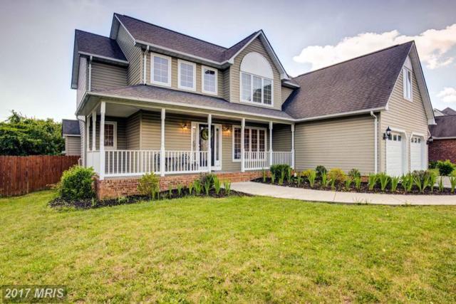 3026 Saratoga Drive, Winchester, VA 22601 (#WI9973658) :: LoCoMusings