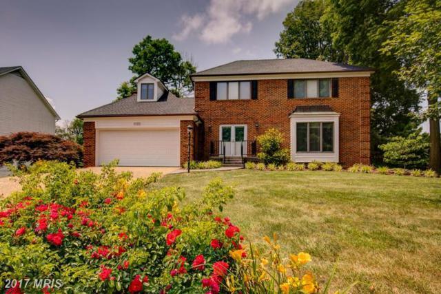 1525 Dalton Place, Winchester, VA 22601 (#WI9977772) :: Pearson Smith Realty