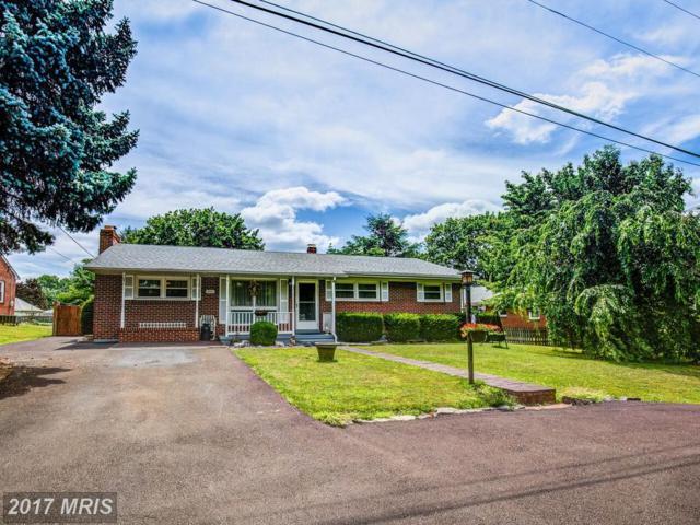 511 Applecroft Road, Winchester, VA 22601 (#WI9999614) :: LoCoMusings